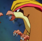 Pidgeot Clone.png