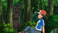 Nuovi amici della foresta!