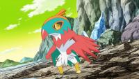 Hawlucha di Ash Mondo Specchio