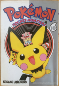 Pokémon Pocket Monsters CY volume 10.png