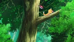 Go Weedle.png