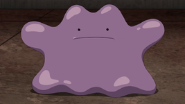 Ditto anime.png