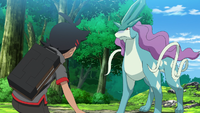 Catch the Legend!? Find the Guardian of Water - Suicune!!