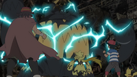 The Lighting Bolt that Severs the Wind! Its Name is Zeraora!!