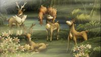 Le quattro stagioni di Sawsbuck!