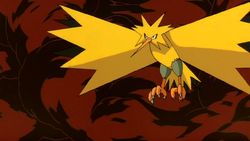 Zapdos F02.png