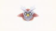 Team Rocket Delibird.png