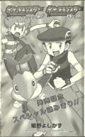 Pokémon Diamond and Pearl manga.png