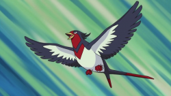 Swellow di Ash.png