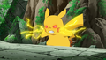 Acromio Pikachu.png