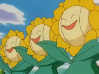 Tammy Sunflora.png