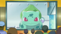 Oak Bulbasaur.png
