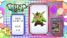 Pokémon Quiz XY094.png