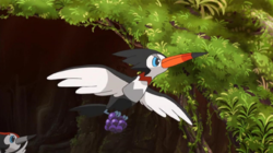 Trumbeak anime.png