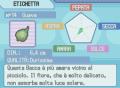 Etichetta Baccaguava.png