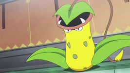 Rosso Victreebel PO.png