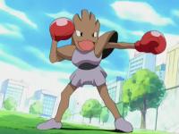 Invincibili Fratelli Pokémon Hitmonchan.png