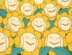 Multipli Sunflora anime.png