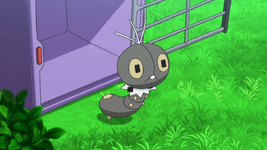 Scatterbug anime.png