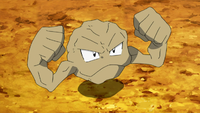 Geodude di Brock