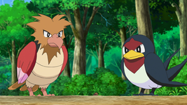 Goh Spearow.png