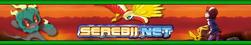 Banner corrente Serebii.png