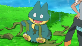 Magnolia Munchlax.png