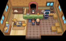 Pensione Pokémon N2B2.png