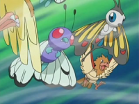 Spearow Raffica.png