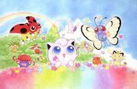 Cartolina campo di fiori.jpg