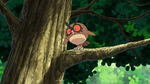 Laboratorio Professor Oak Hoothoot.png