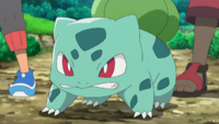 link = Bulbasaur di Ash