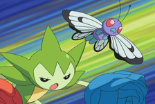 Drew Butterfree.png