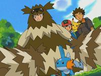 I Pokémon della foresta