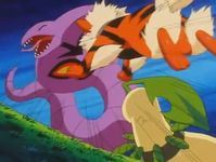 Gary Arcanine Riduttore.png