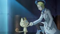 Meowth, Acromio e la rivalità tra Team!
