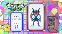 Pokémon Quiz XY132.png