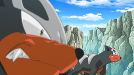 Team Flare Houndour.png
