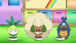 Asilo Pokémon.png