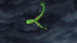 Rayquaza ricorrente anime.png