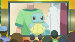 Oak Squirtle.png