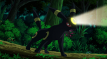 Virgil Umbreon Flash.png
